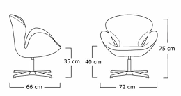 derlook swan chair